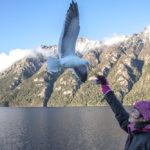 Cruce Andino: de Bariloche a Puerto Varas