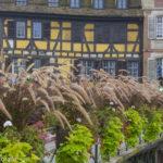 Estrasburgo: o que Fazer e Dicas da Capital da Alsácia