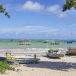 Alagoas: Praias ao Norte de Maceió - roteiro e dicas