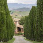 Viajar sem sair de casa: filmes gravados na Toscana